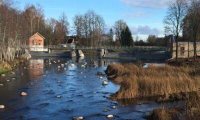 Jändja paisul Pärnu jõel on kalade läbipääs tagatud. Foto: Elina Leiner